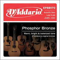 D'ADDARIO ACOUSTIC BASS SET