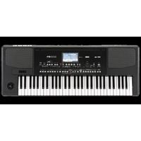 korg pa300 61 note arranger keyboard